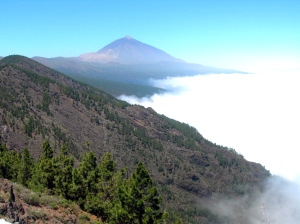 Ecotour Volcanoes of Tenerife is one of the Intercruises shorex included in the STEP project